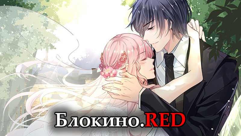 Идеальный муж и я или как украсть 55 поцелуев